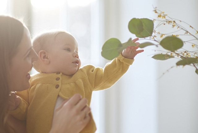 beba poseže za biljkama 1